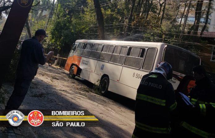 Ônibus Margarida Galvão