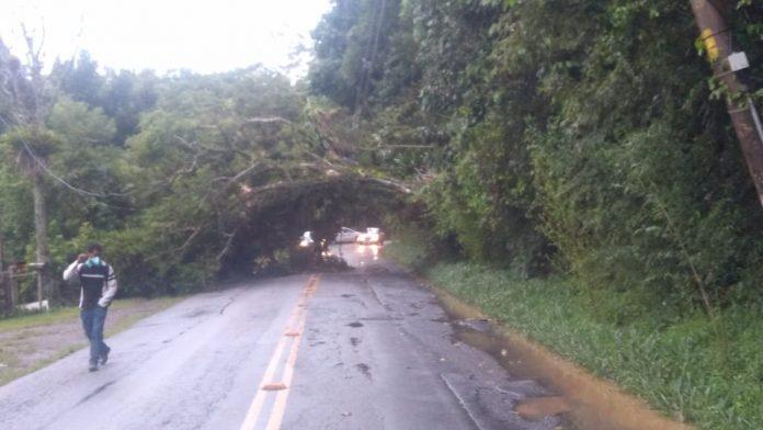 Estrada Marsilac