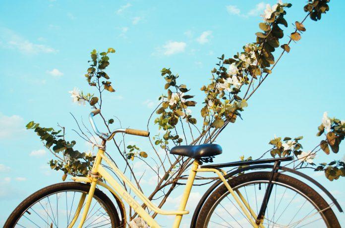 Bicicleta Mobilidade